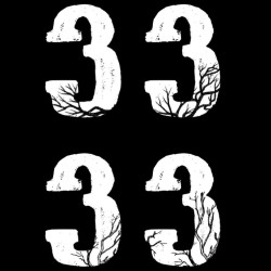 FAKE 3333