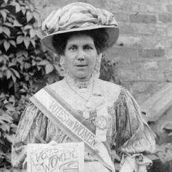 FAKE Alice Hawkins Suffragette –